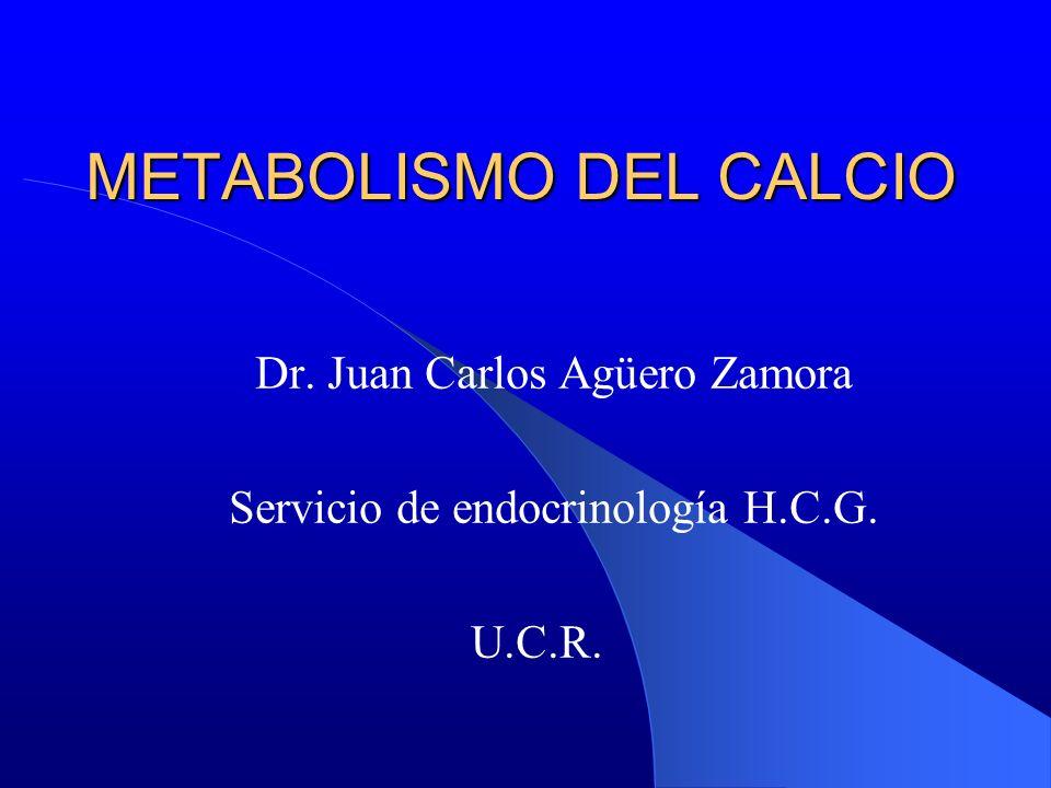 Dr. Juan Carlos Agüero Zamora Servicio de endocrinología H.C.G. U.C.R. METABOLISMO DEL CALCIO
