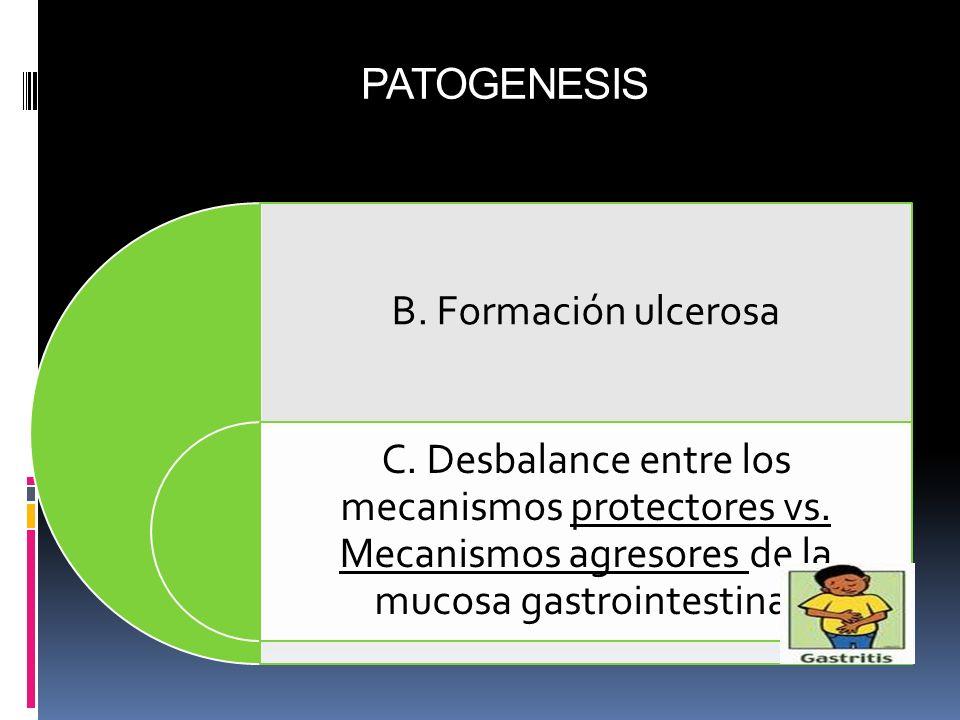 PATOGENESIS B. Formación ulcerosa C. Desbalance entre los mecanismos protectores vs. Mecanismos agresores de la mucosa gastrointestinal