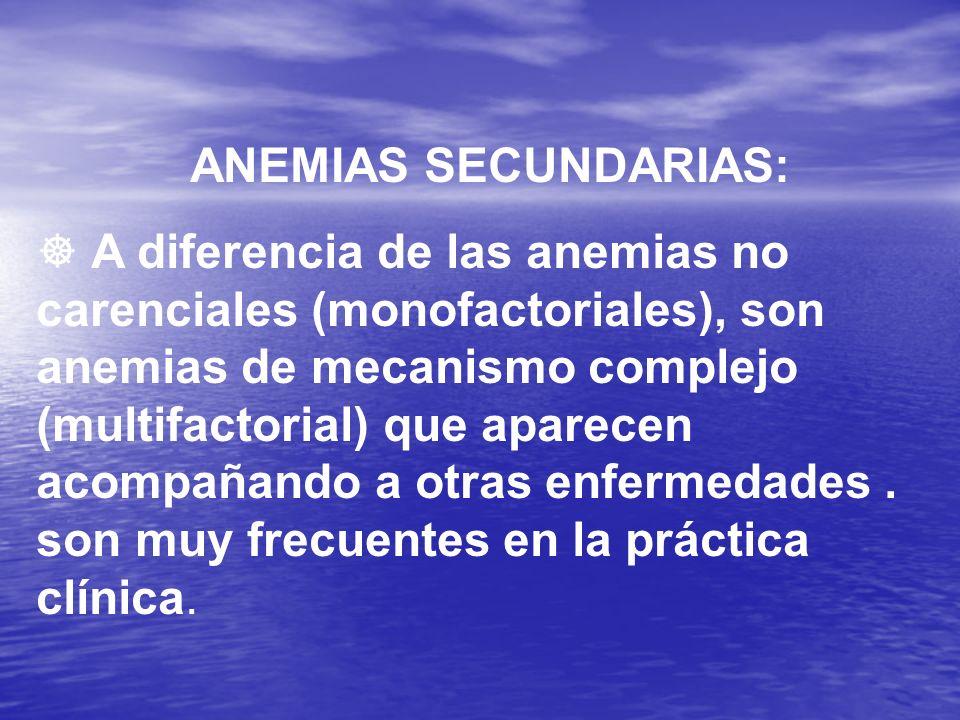 ENTRE LOS GRUPOS DE ANEMIAS SECUNDARIAS A OTRA ENFERMEDAD TENEMOS ANEMIA DE LAS ENFERMEDADES CRÓNICAS NEOPLASIAS ENFERMEDADES RENALES ENFERMEDADES HEPÁTICAS ENFERMEDADES ENDOCRINAS ENFERMEDADES INFECCIOSAS