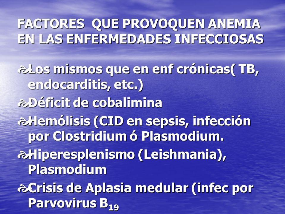 FACTORES QUE PROVOQUEN ANEMIA EN LAS ENFERMEDADES INFECCIOSAS Los mismos que en enf crónicas( TB, endocarditis, etc.) Los mismos que en enf crónicas(