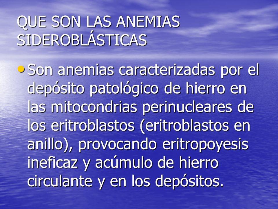 QUE SON LAS ANEMIAS SIDEROBLÁSTICAS Son anemias caracterizadas por el depósito patológico de hierro en las mitocondrias perinucleares de los eritrobla