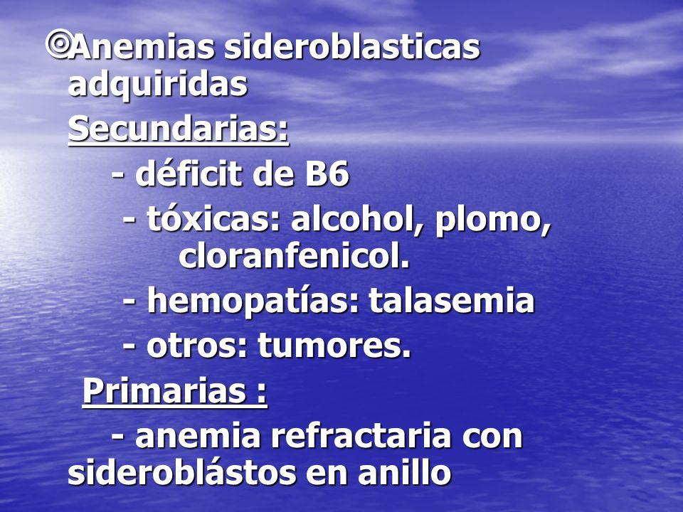 Anemias sideroblasticas adquiridas Anemias sideroblasticas adquiridasSecundarias: - déficit de B6 - tóxicas: alcohol, plomo, cloranfenicol. - tóxicas: