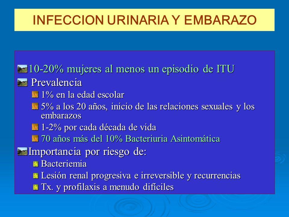 INFECCION URINARIA Y EMBARAZO 10-20% mujeres al menos un episodio de ITU Prevalencia Prevalencia 1% en la edad escolar 5% a los 20 años, inicio de las