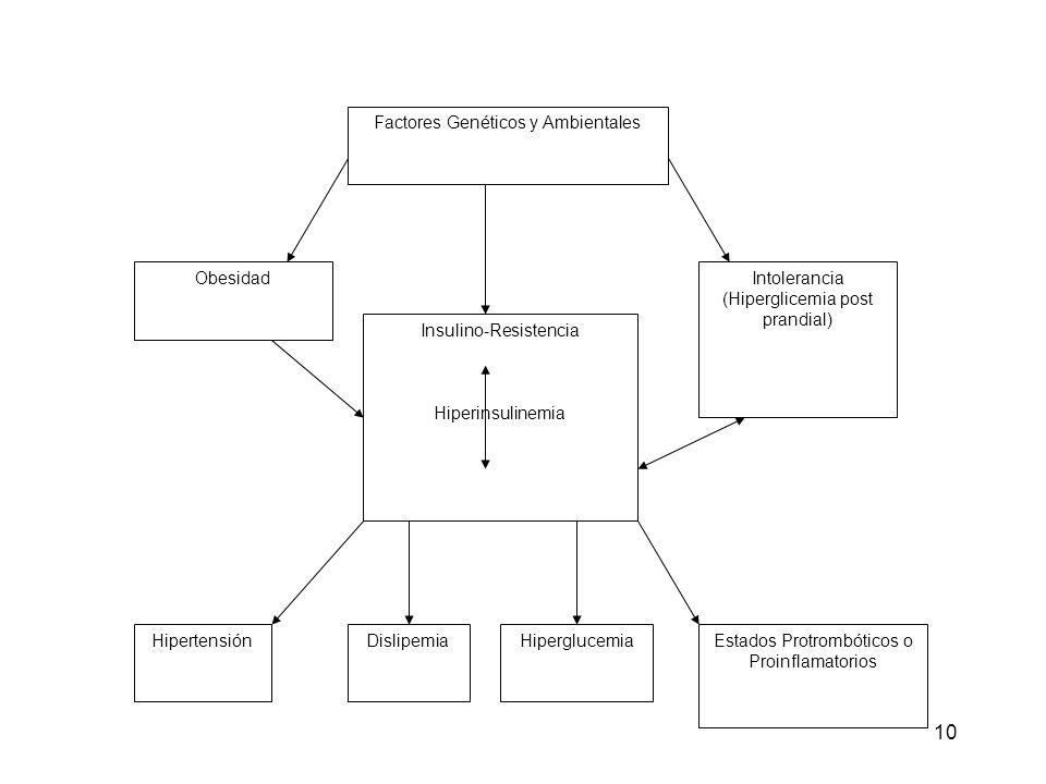 10 Factores Genéticos y Ambientales ObesidadIntolerancia (Hiperglicemia post prandial) Insulino-Resistencia Hiperinsulinemia HipertensiónDislipemiaHip