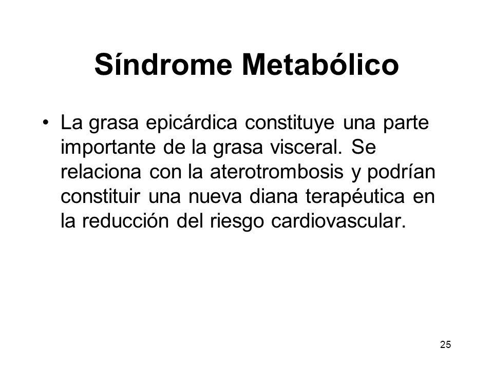 25 Síndrome Metabólico La grasa epicárdica constituye una parte importante de la grasa visceral. Se relaciona con la aterotrombosis y podrían constitu