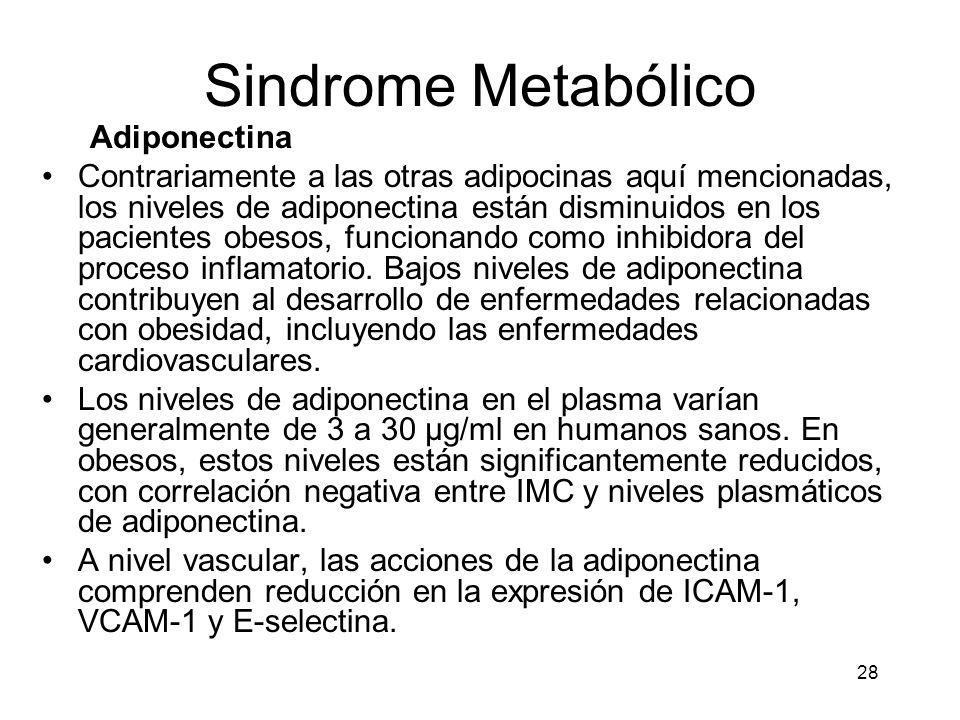 28 Sindrome Metabólico Adiponectina Contrariamente a las otras adipocinas aquí mencionadas, los niveles de adiponectina están disminuidos en los pacie