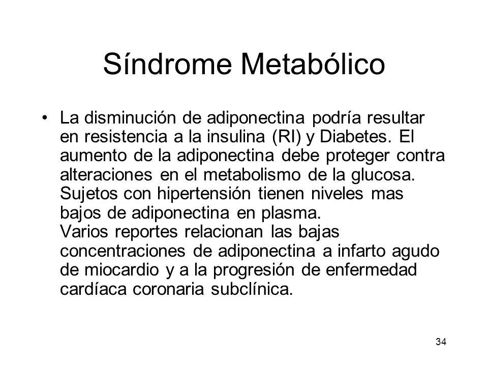 34 Síndrome Metabólico La disminución de adiponectina podría resultar en resistencia a la insulina (RI) y Diabetes. El aumento de la adiponectina debe
