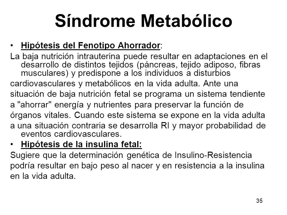 35 Síndrome Metabólico Hipótesis del Fenotipo Ahorrador: La baja nutrición intrauterina puede resultar en adaptaciones en el desarrollo de distintos t