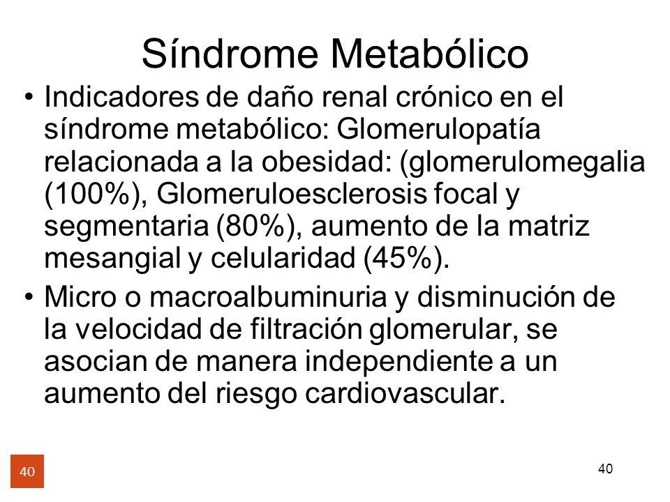 40 Síndrome Metabólico 40 Indicadores de daño renal crónico en el síndrome metabólico: Glomerulopatía relacionada a la obesidad: (glomerulomegalia (10