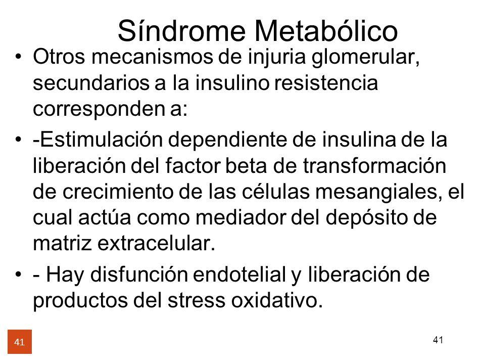41 Síndrome Metabólico 41 Otros mecanismos de injuria glomerular, secundarios a la insulino resistencia corresponden a: -Estimulación dependiente de i
