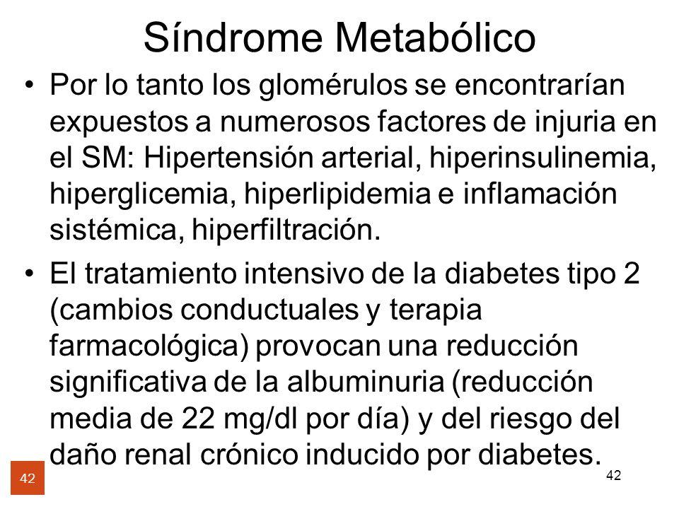 42 Síndrome Metabólico 42 Por lo tanto los glomérulos se encontrarían expuestos a numerosos factores de injuria en el SM: Hipertensión arterial, hiper