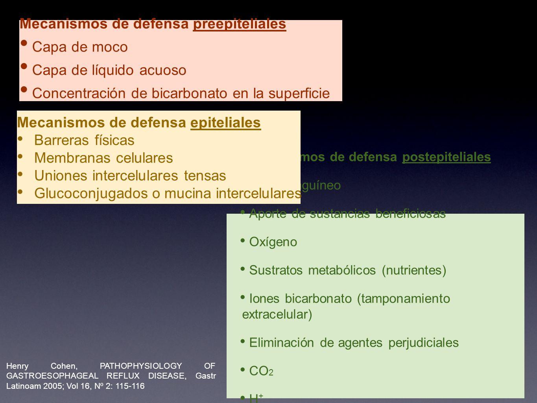 Mecanismos de defensa postepiteliales Flujo sanguíneo Aporte de sustancias beneficiosas Oxígeno Sustratos metabólicos (nutrientes) Iones bicarbonato (tamponamiento extracelular) Eliminación de agentes perjudiciales CO 2 H + Productos metabólicos intermedios Restos celulares Mecanismos de defensa preepiteliales Capa de moco Capa de líquido acuoso Concentración de bicarbonato en la superficie Mecanismos de defensa epiteliales Barreras físicas Membranas celulares Uniones intercelulares tensas Glucoconjugados o mucina intercelulares Henry Cohen, PATHOPHYSIOLOGY OF GASTROESOPHAGEAL REFLUX DISEASE, Gastr Latinoam 2005; Vol 16, Nº 2: 115-116