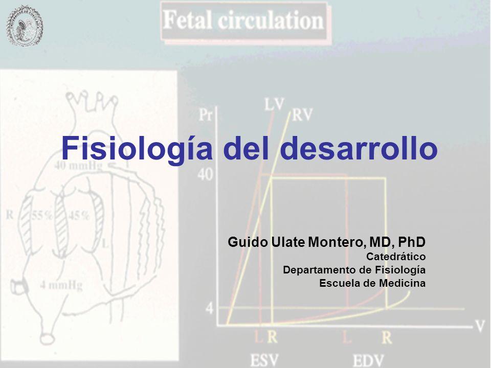 Fisiología del desarrollo Guido Ulate Montero, MD, PhD Catedrático Departamento de Fisiología Escuela de Medicina
