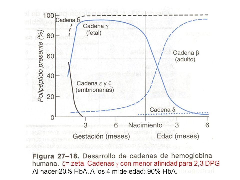 = zeta. Cadenas con menor afinidad para 2,3 DPG Al nacer 20% HbA. A los 4 m de edad: 90% HbA.