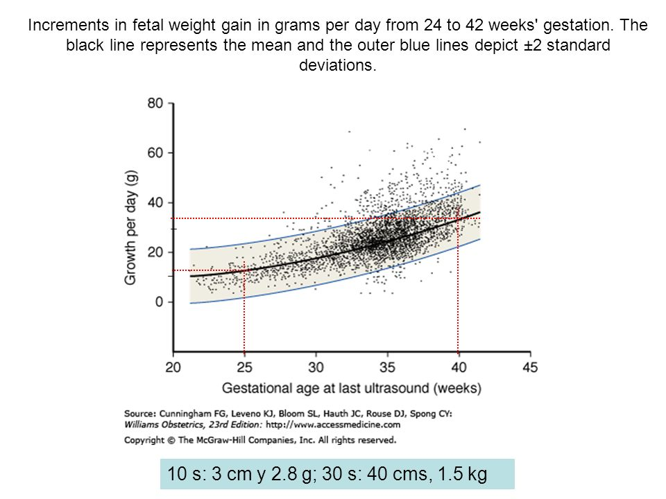Increments in fetal weight gain in grams per day from 24 to 42 weeks' gestation. The black line represents the mean and the outer blue lines depict ±2