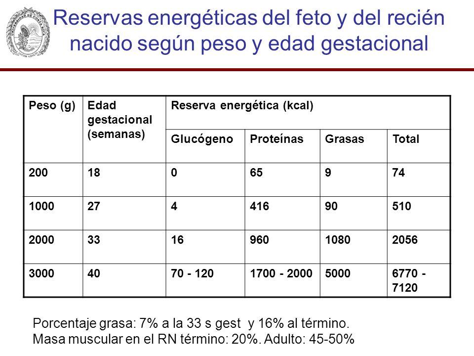 Reservas energéticas del feto y del recién nacido según peso y edad gestacional Peso (g)Edad gestacional (semanas) Reserva energética (kcal) Glucógeno