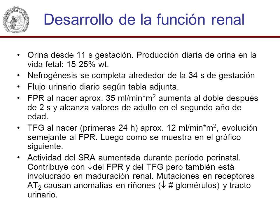 Desarrollo de la función renal Orina desde 11 s gestación. Producción diaria de orina en la vida fetal: 15-25% wt. Nefrogénesis se completa alrededor