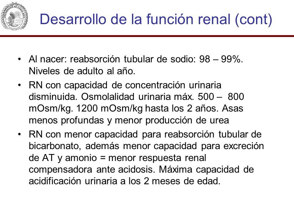 Desarrollo de la función renal (cont) Al nacer: reabsorción tubular de sodio: 98 – 99%. Niveles de adulto al año. RN con capacidad de concentración ur