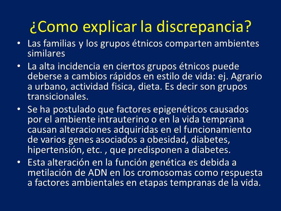 ¿Como explicar la discrepancia? Las familias y los grupos étnicos comparten ambientes similares Las familias y los grupos étnicos comparten ambientes
