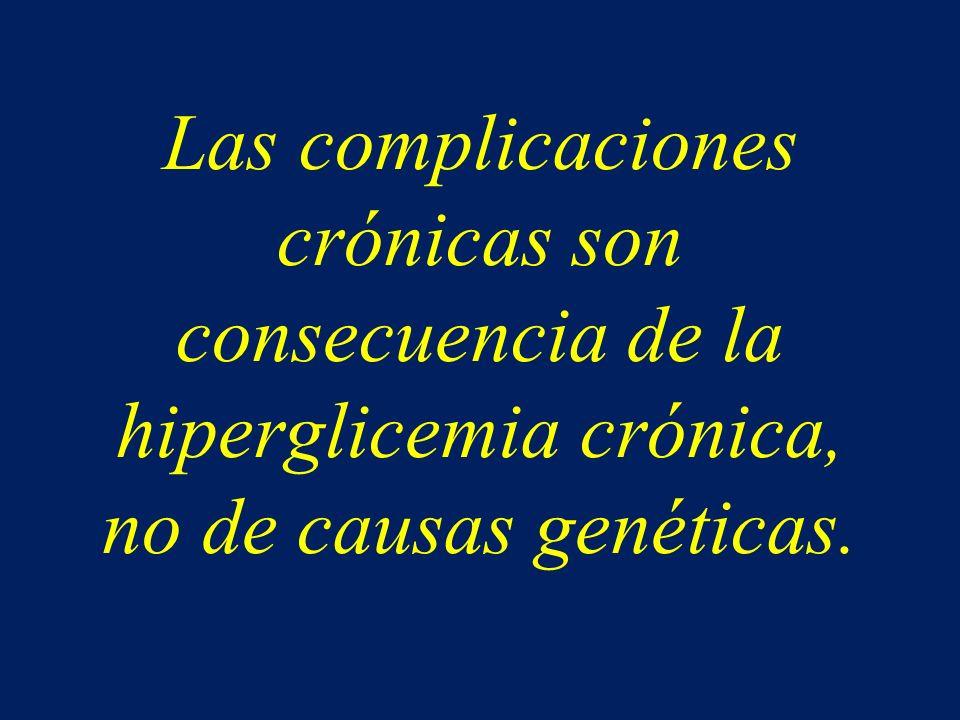 Las complicaciones crónicas son consecuencia de la hiperglicemia crónica, no de causas genéticas.