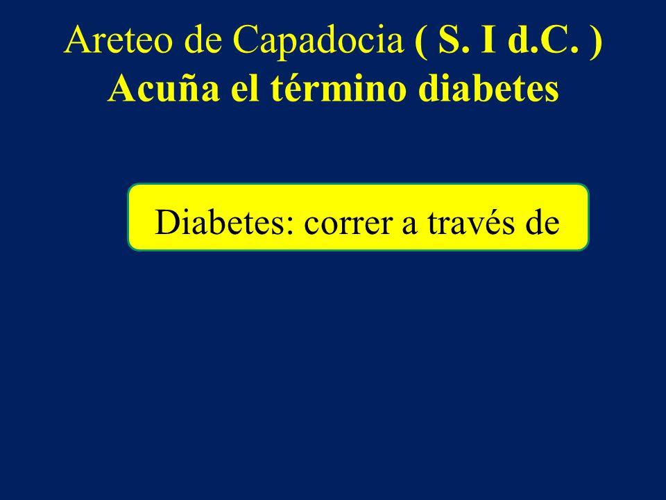 Areteo de Capadocia ( S. I d.C. ) Acuña el término diabetes Diabetes: correr a través de