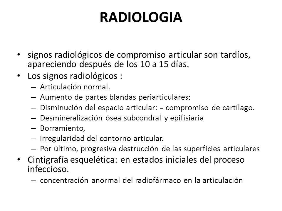 RADIOLOGIA signos radiológicos de compromiso articular son tardíos, apareciendo después de los 10 a 15 días. Los signos radiológicos : – Articulación