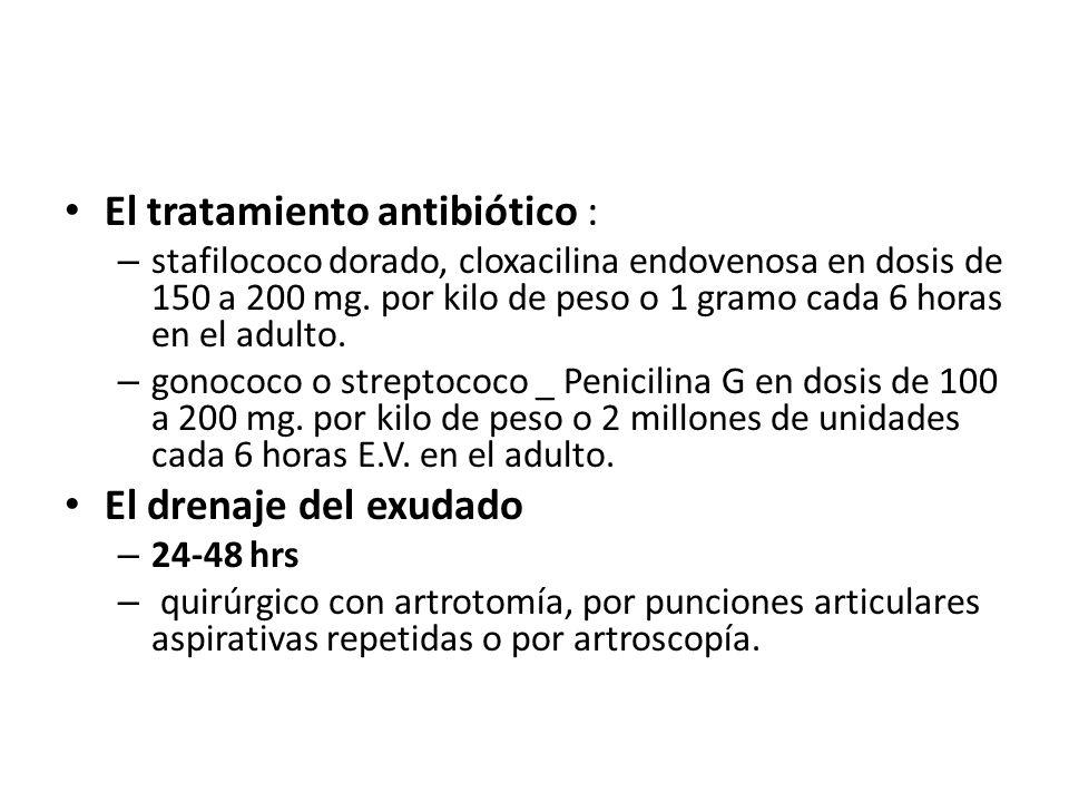 El tratamiento antibiótico : – stafilococo dorado, cloxacilina endovenosa en dosis de 150 a 200 mg. por kilo de peso o 1 gramo cada 6 horas en el adul