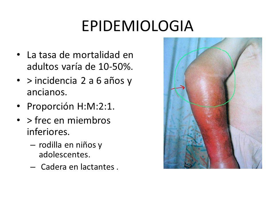 EPIDEMIOLOGIA La tasa de mortalidad en adultos varía de 10-50%. > incidencia 2 a 6 años y ancianos. Proporción H:M:2:1. > frec en miembros inferiores.