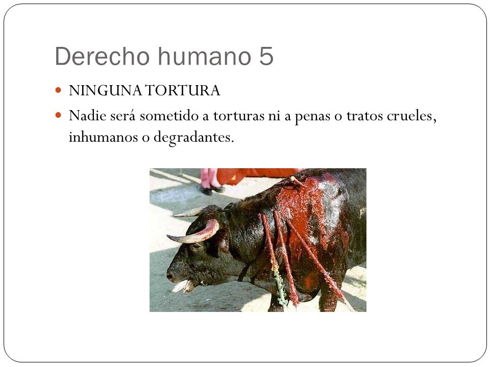 Derecho humano 5 NINGUNA TORTURA Nadie será sometido a torturas ni a penas o tratos crueles, inhumanos o degradantes.