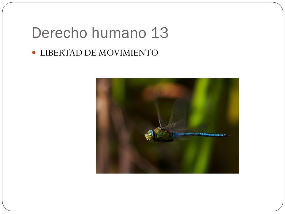 Derecho humano 13 LIBERTAD DE MOVIMIENTO