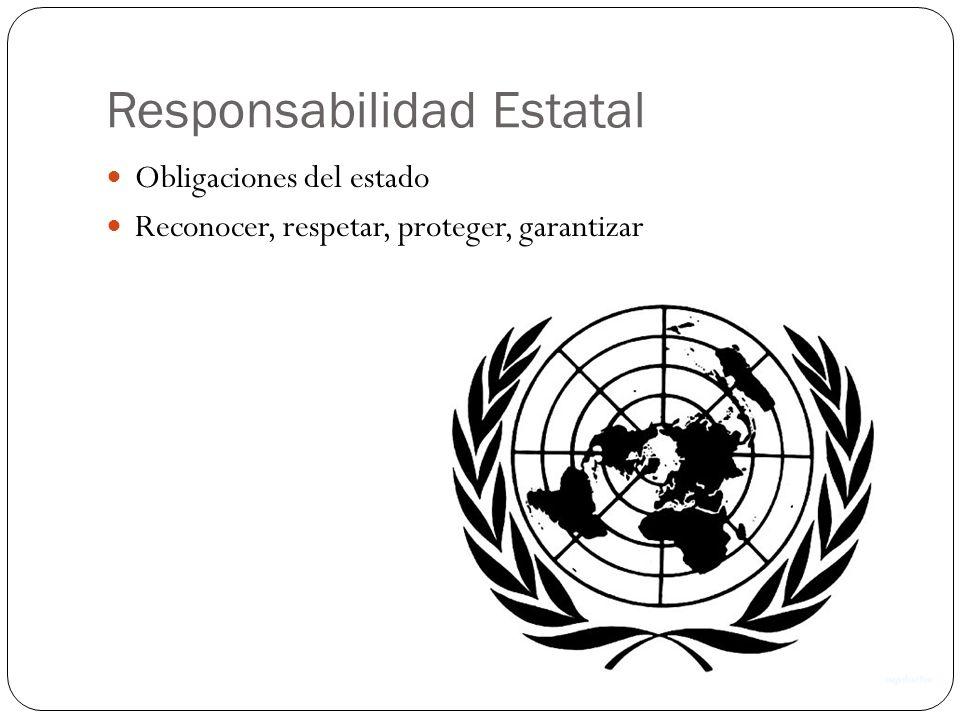 Responsabilidad Estatal Obligaciones del estado Reconocer, respetar, proteger, garantizar