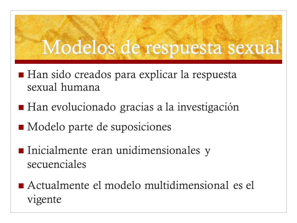 Han sido creados para explicar la respuesta sexual humana Han evolucionado gracias a la investigaci ó n Modelo parte de suposiciones Inicialmente eran
