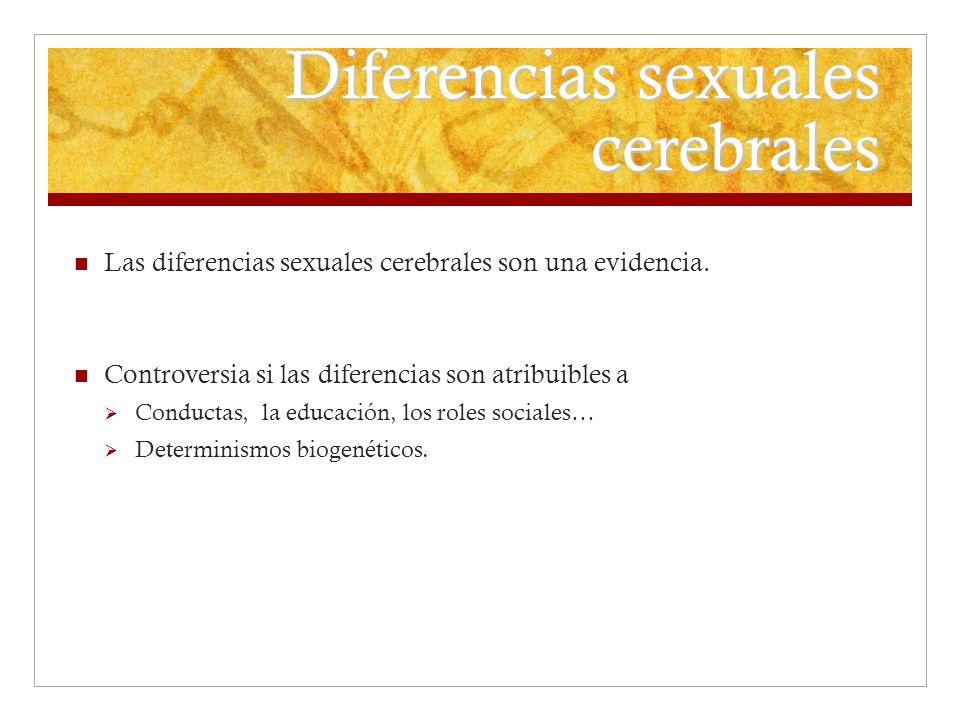 Diferencias sexuales cerebrales Las diferencias sexuales cerebrales son una evidencia. Controversia si las diferencias son atribuibles a Conductas, la