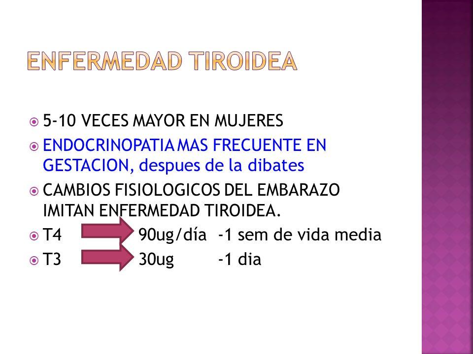 TESTEMBARAZO NORMAL HIPERTIROIDISMO Y EMBARAZO HIPEREMESISPOSPARTO TIROIDITIS HIPOTIROIDISMO TSHNORMALINDETECTABLENORMAL O BAJO INDETECTABLEAUMENTADO TBGAUMENTADO NORMAL T4 TOTALAUMENTADO BAJO T4 LIBRENORMALAUMENTADONORMAL O AUMENTADO AUMENTADOBAJO T3 TOTALAUMENTADO BAJO T3 LIBRENORMALAUMENTADONORMAL O AUMENTADO AUMENTADOBAJO TSH aumenta y T4 disminuye.