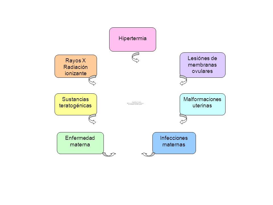 Hipertermia Rayos X Radiación ionizante Lesiónes de membranas ovulares Malformaciones uterinas Infecciones maternas Enfermedad materna Sustancias tera