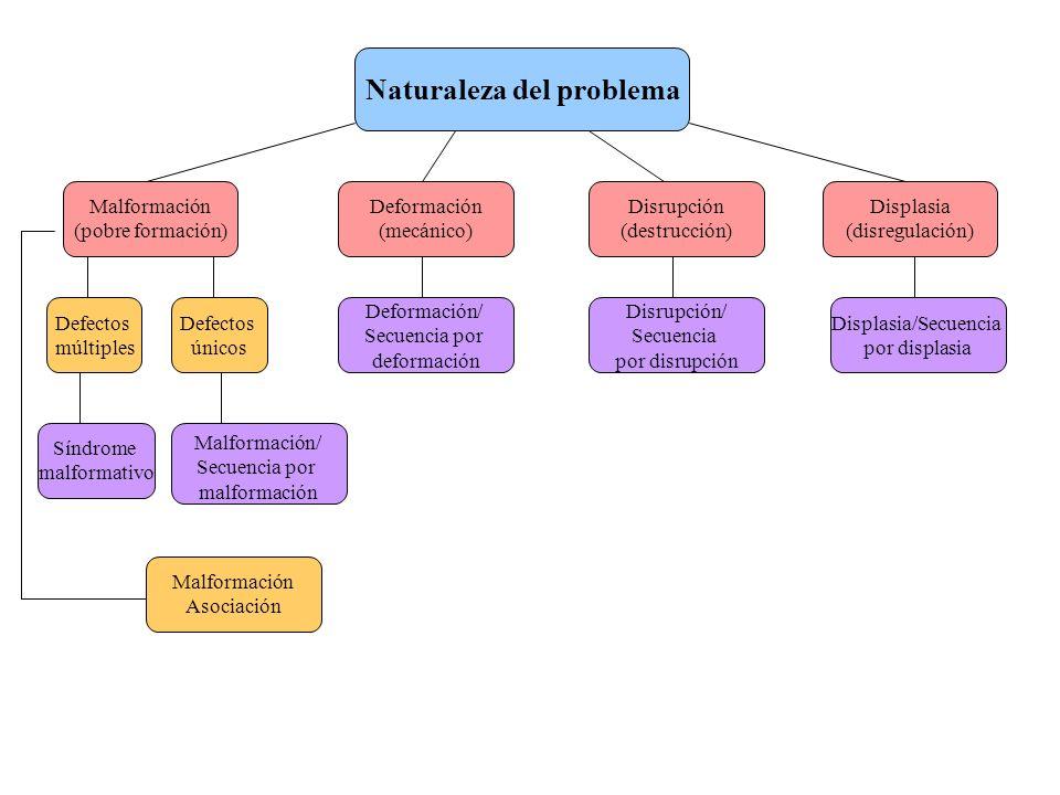 Naturaleza del problema Defectos múltiples Malformación/ Secuencia por malformación Deformación/ Secuencia por deformación Disrupción/ Secuencia por d