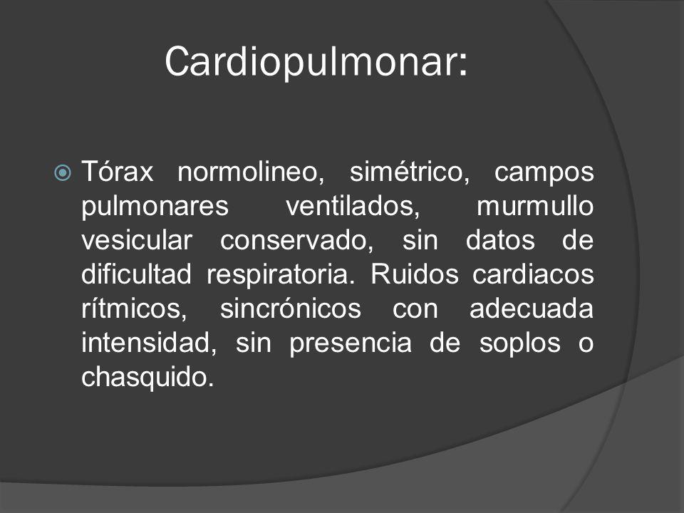 Cardiopulmonar: Tórax normolineo, simétrico, campos pulmonares ventilados, murmullo vesicular conservado, sin datos de dificultad respiratoria. Ruidos