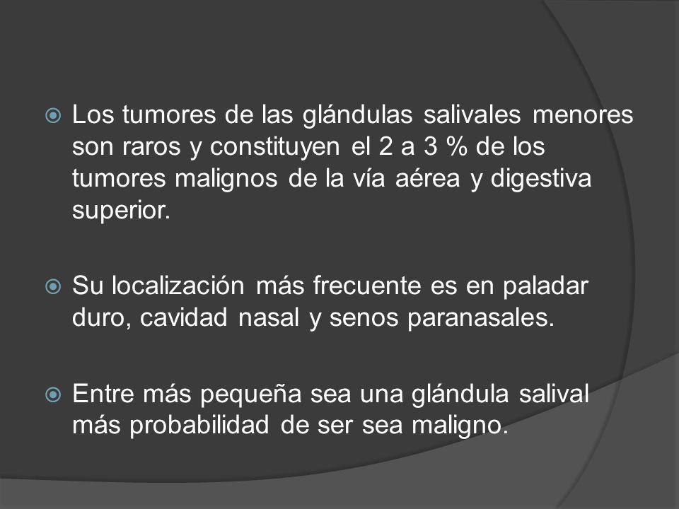 Los tumores de las glándulas salivales menores son raros y constituyen el 2 a 3 % de los tumores malignos de la vía aérea y digestiva superior. Su loc