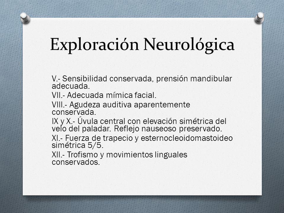 Exploración Neurológica V.- Sensibilidad conservada, prensión mandibular adecuada. VII.- Adecuada mímica facial. VIII.- Agudeza auditiva aparentemente