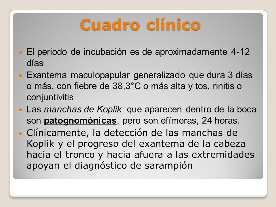 Cuadro clínico El periodo de incubación es de aproximadamente 4-12 días Exantema maculopapular generalizado que dura 3 días o más, con fiebre de 38,3°