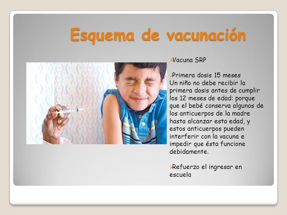 Esquema de vacunación Vacuna SRP Primera dosis 15 meses Un niño no debe recibir la primera dosis antes de cumplir los 12 meses de edad: porque que el