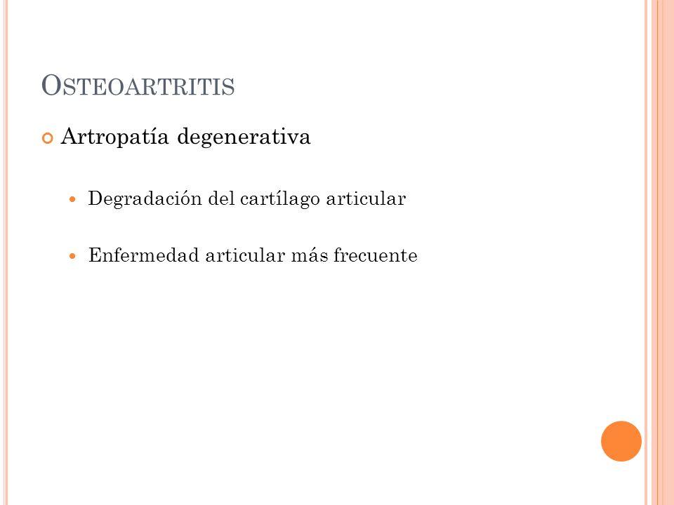 O STEOARTRITIS Artropatía degenerativa Degradación del cartílago articular Enfermedad articular más frecuente