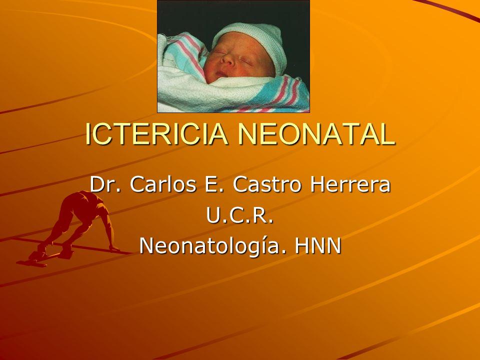 ICTERICIA NEONATAL Dr. Carlos E. Castro Herrera U.C.R. Neonatología. HNN