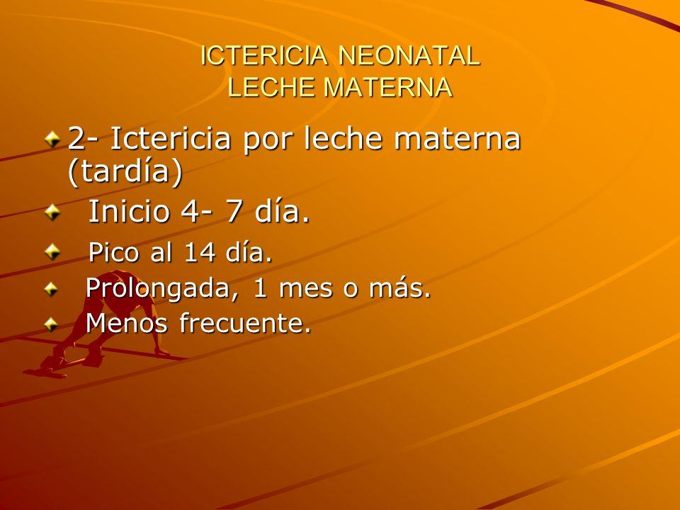 ICTERICIA NEONATAL LECHE MATERNA 2- Ictericia por leche materna (tardía) Inicio 4- 7 día. Inicio 4- 7 día. Pico al 14 día. Pico al 14 día. Prolongada,
