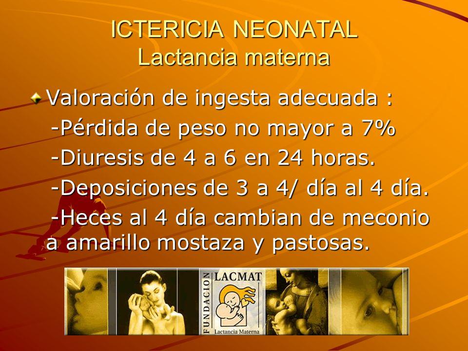 ICTERICIA NEONATAL Lactancia materna Valoración de ingesta adecuada : -Pérdida de peso no mayor a 7% -Pérdida de peso no mayor a 7% -Diuresis de 4 a 6