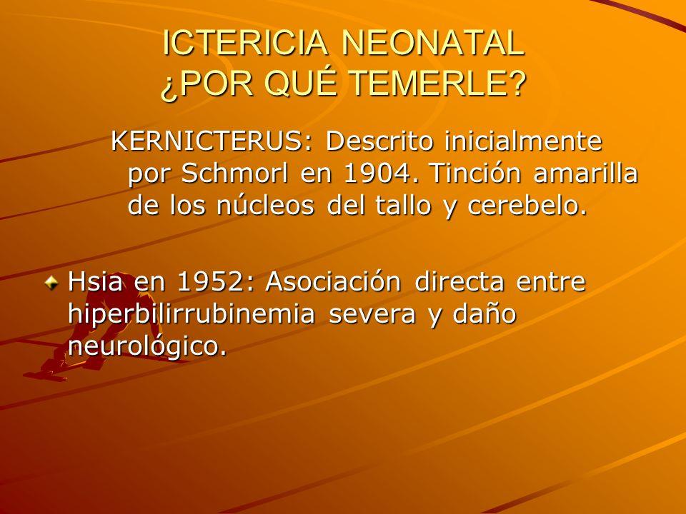 ICTERICIA NEONATAL ¿POR QUÉ TEMERLE? KERNICTERUS: Descrito inicialmente por Schmorl en 1904. Tinción amarilla de los núcleos del tallo y cerebelo. Hsi