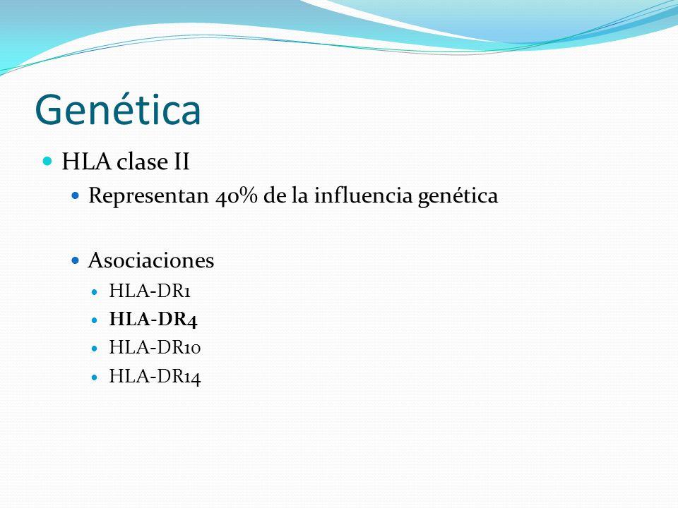 Genética HLA clase II Representan 40% de la influencia genética Asociaciones HLA-DR1 HLA-DR4 HLA-DR10 HLA-DR14