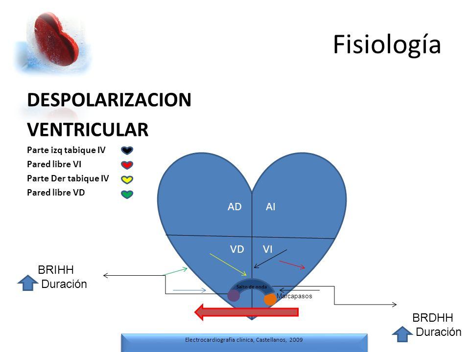 Fisiología Electrocardiografía clínica, Castellanos, 2009 Electrocardiografía clínica, Castellanos, 2009 DESPOLARIZACION VENTRICULAR Parte izq tabique