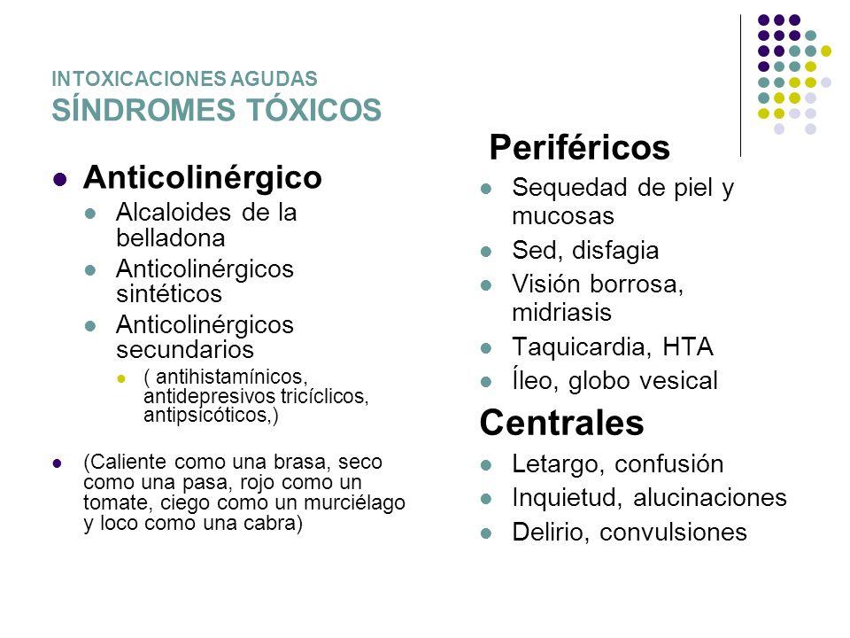 INTOXICACIONES AGUDAS SÍNDROMES TÓXICOS Anticolinérgico Alcaloides de la belladona Anticolinérgicos sintéticos Anticolinérgicos secundarios ( antihist