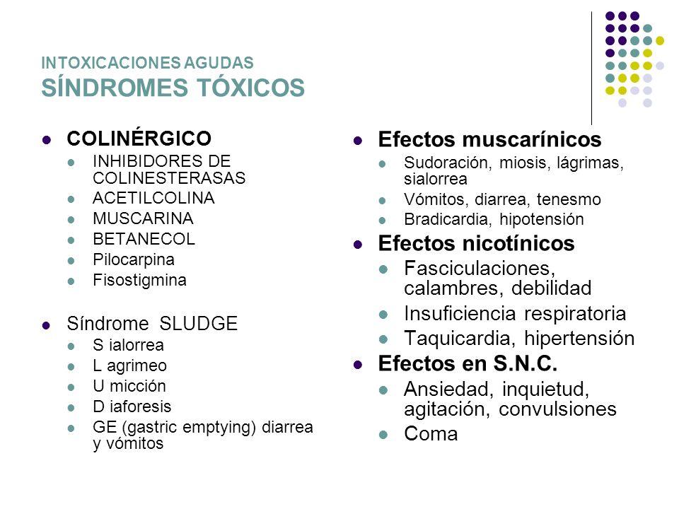 INTOXICACIONES AGUDAS SÍNDROMES TÓXICOS COLINÉRGICO INHIBIDORES DE COLINESTERASAS ACETILCOLINA MUSCARINA BETANECOL Pilocarpina Fisostigmina Síndrome S